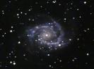 NGC 2997 Spiral Galaxy
